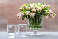 dutz-Vasen-klar